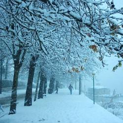 [تصویر:  iranshahrsaz.com_تصویر-7.jpg]