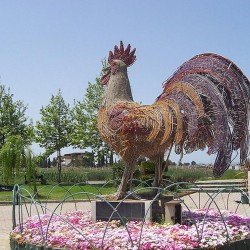 [تصویر:  iranshahrsaz.com_تصویر-9.jpg]
