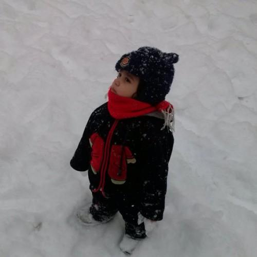 [تصویر:  iranshahrsaz.com_alireza1.jpg]